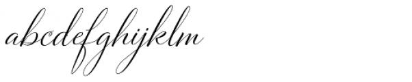 Bettrisia Script Alt Regular Font LOWERCASE