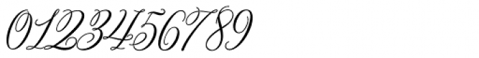 Bettrisia Script Bold Font OTHER CHARS