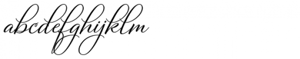 Bettrisia Script Bold Font LOWERCASE