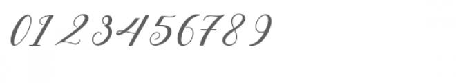 Beloved Script Font OTHER CHARS