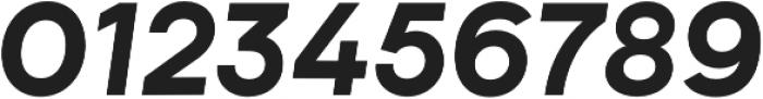 Biotif ExtraBold Italic otf (700) Font OTHER CHARS