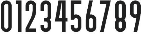 Bivoac Reguler ttf (400) Font OTHER CHARS