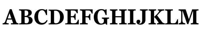 Bienetresocial Bold Font UPPERCASE