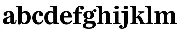 Bienetresocial Bold Font LOWERCASE