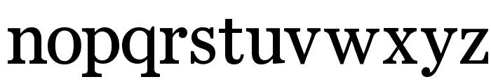 Bienetresocial Font LOWERCASE
