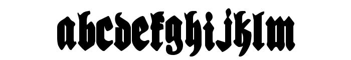 Bierg?rten Condensed Font LOWERCASE