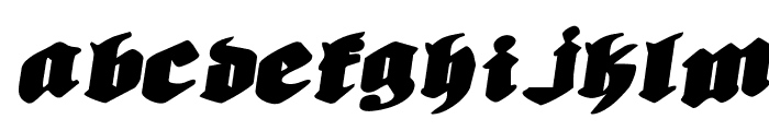 Bierg?rten Rotalic Expanded Font LOWERCASE