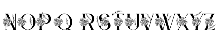 Bintari Personal Use Font UPPERCASE
