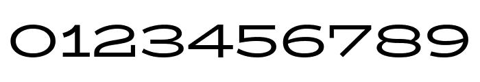 BioRhyme Expanded Regular Font OTHER CHARS