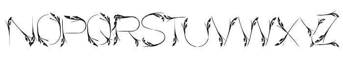 Bird Feather Font UPPERCASE