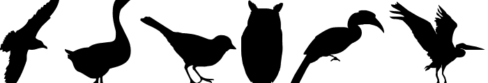Birds of a Feather Font OTHER CHARS