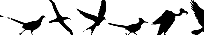 Birds of a Feather Font UPPERCASE