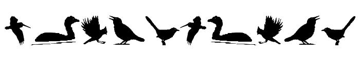BirdsAndFriends Font OTHER CHARS