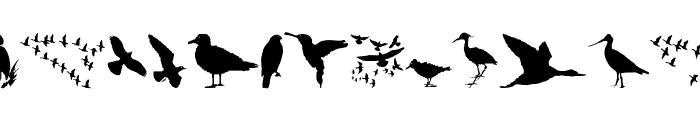 BirdsAndFriends Font UPPERCASE