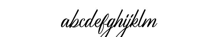 BirminghamScriptDEMO Font LOWERCASE