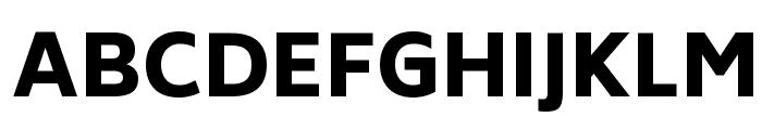 Biryani Heavy Font UPPERCASE