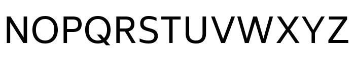 Biryani Regular Font UPPERCASE