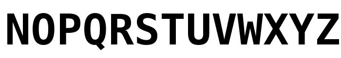 Bitstream Vera Sans Mono Bold Font UPPERCASE