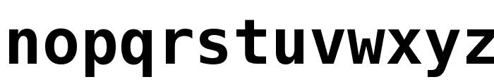 Bitstream Vera Sans Mono Bold Font LOWERCASE