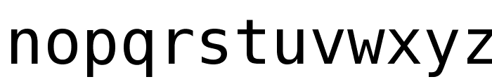 Bitstream Vera Sans Mono Font LOWERCASE