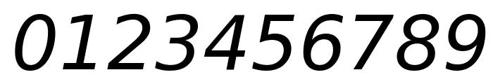 Bitstream Vera Sans Oblique Font OTHER CHARS