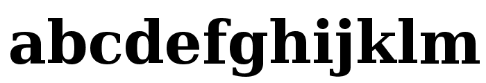 Bitstream Vera Serif Bold Font LOWERCASE