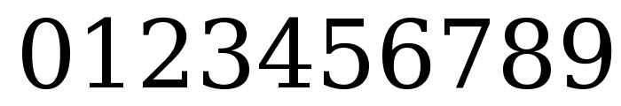 Bitstream Vera Serif Font OTHER CHARS