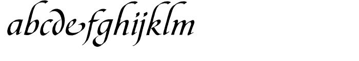 Bible Script Alternate One Font LOWERCASE