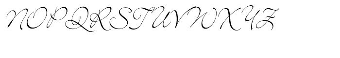 Bickley Script Font UPPERCASE
