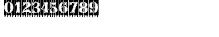 Birdcage Regular Font OTHER CHARS
