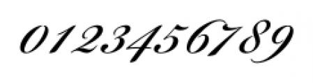 Bickham Script® Pro 3 Regular Font OTHER CHARS