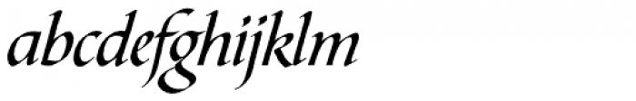 Bible Script Font LOWERCASE