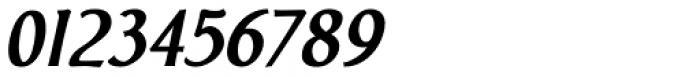 Biblia Bold Italic Font OTHER CHARS