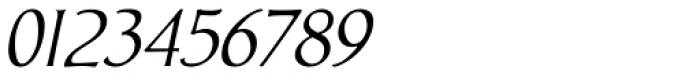 Biblia Italic Font OTHER CHARS
