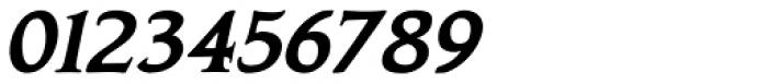 Biblia Serif Bold Italic Font OTHER CHARS