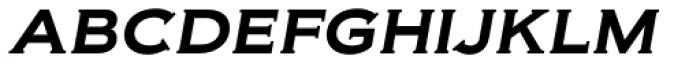 Biondi Italic Font LOWERCASE