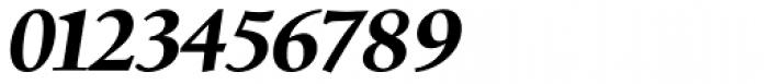 Birka Pro Bold Italic Font OTHER CHARS