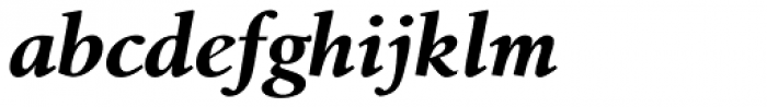 Birka Pro Bold Italic Font LOWERCASE