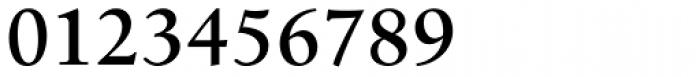 Birka Pro SemiBold Font OTHER CHARS