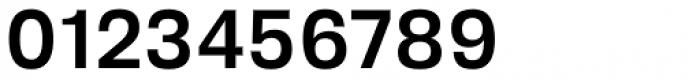 Biwa Medium Font OTHER CHARS