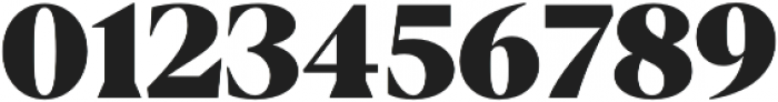 Blacker Display Heavy otf (800) Font OTHER CHARS