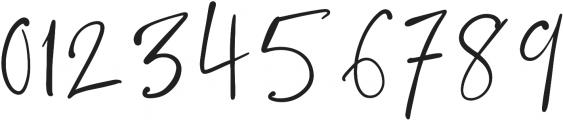 Blush Society Regular otf (400) Font OTHER CHARS
