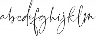 Blush Society Regular otf (400) Font LOWERCASE