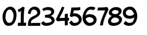 Bleeker Regular Font OTHER CHARS