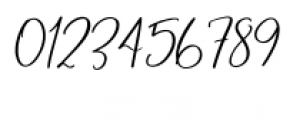 Blush & Bloom Slanted Font OTHER CHARS