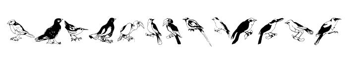 Blackbirds Font LOWERCASE