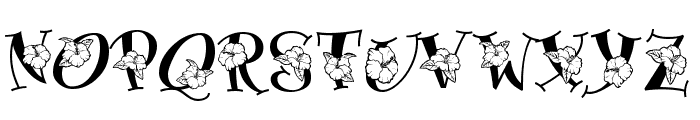 Blossom Font UPPERCASE