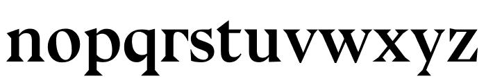 Bluu Next Bold Font LOWERCASE
