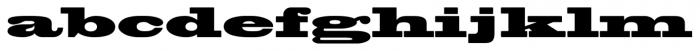 Blackoak® Std Regular Font LOWERCASE