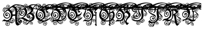 Black And Beauty Curly Alt Caps Font UPPERCASE